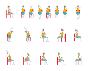 Chair Workout - Quick Chair Exercises (17)