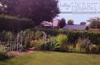 mom & dad's garden