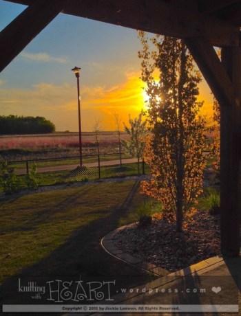 leafy sunset-1
