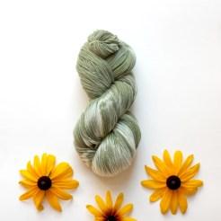 Stroll_YellowConeflower_7