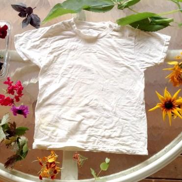 July eco print shirt start