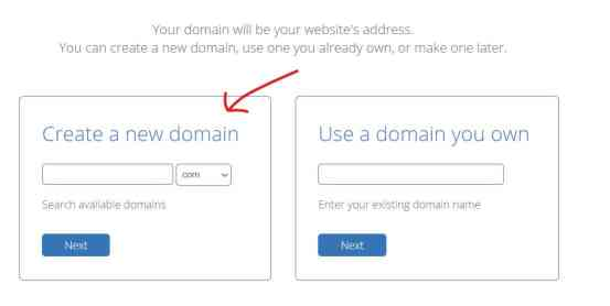 Step 3: Purchase a Domain from Bluehost
