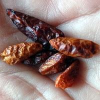 cayenne chilli pepper