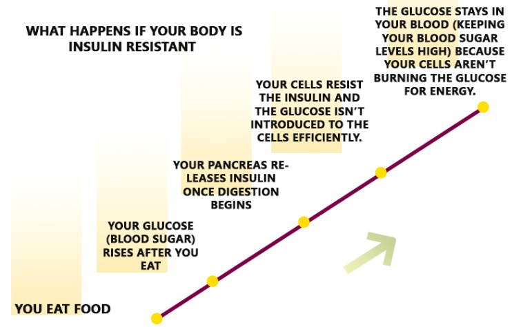 what if you are insulin resistant