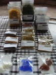 Kruiden - Herbs