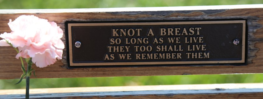 "Plaque on the KAB Memorial Bench at Hamilton Harbour waterfont: ""Knot A Breast so long as we live they too shall live as we remember them"""