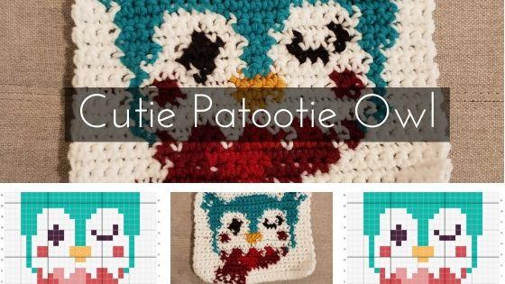 Cutie Patootie Owl
