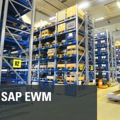 SAP EWM TRANING