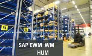 SAP EWM , SAP WM, SAP HUM