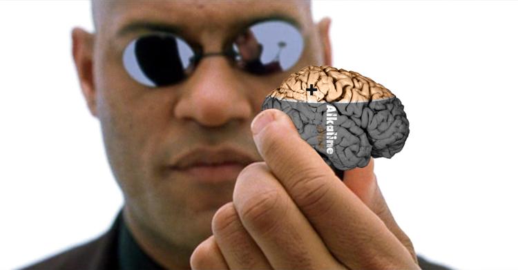 Brain Battery
