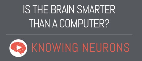 Is the brain smarter than a computer?