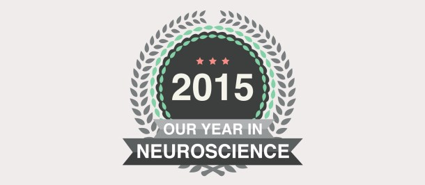 Our Year in Neuroscience - 2015 - Knowing Neurons