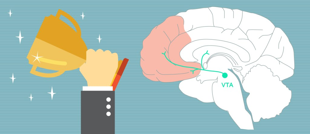 why dopamine makes people more impulsive