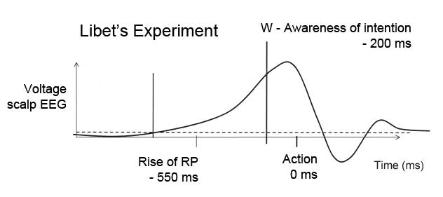 LibetExperiment