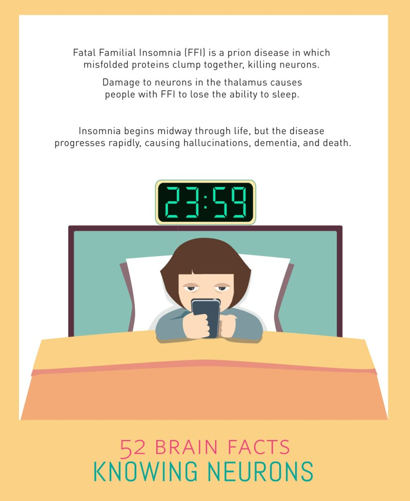 Myth or Fact? A misfolded protein can cause you to never sleep again.