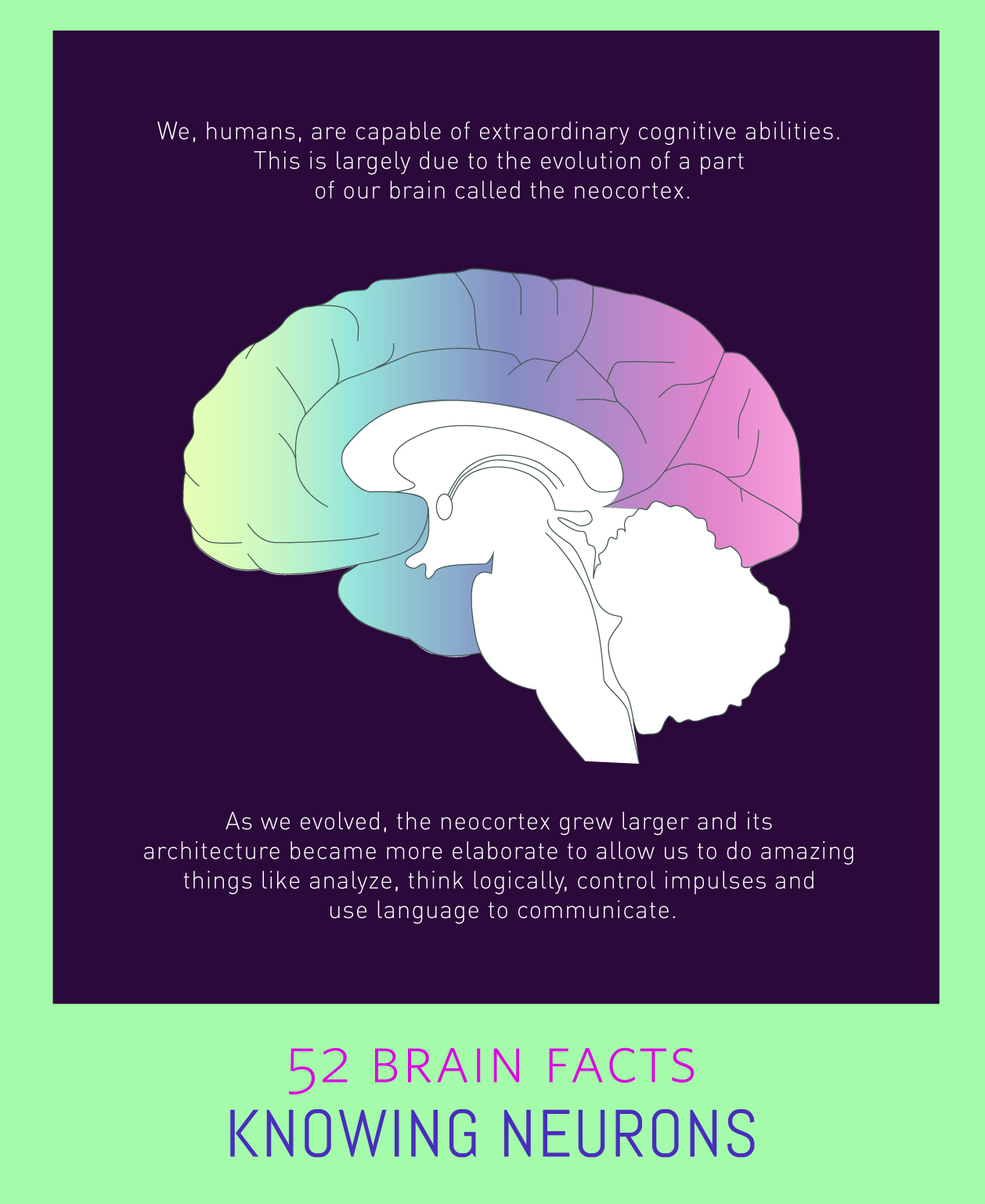Myth or Fact? One region of the brain sets us humans apart from other species.