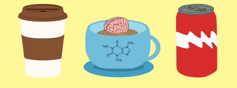 Caffeine Knowing Neurons