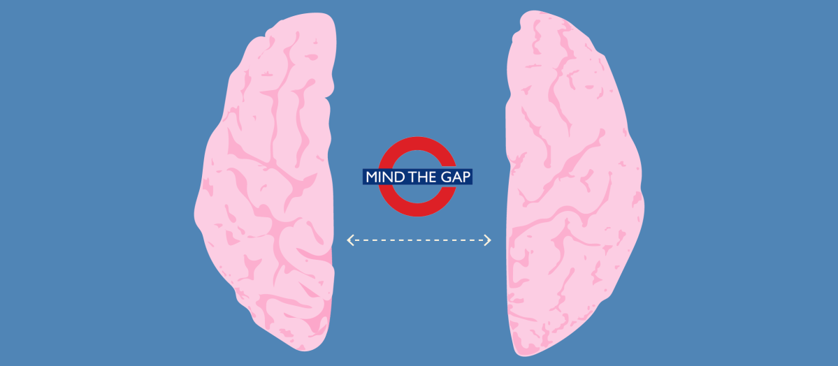 Mind the Gap: New Evidence on How Neurons Connect Left and Right Brain Halves