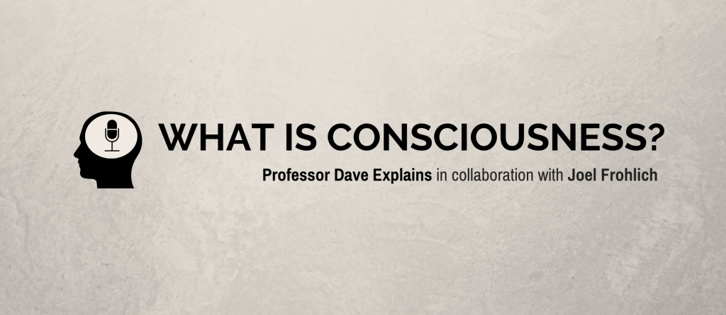 """What is Consciousness?"" Professor Dave Explains in collaboration with Joel Frohlich"