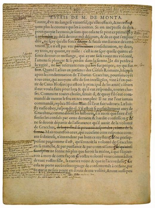 """Even Montaigne's (the inventor of the essay) Essays came back with with scribbled notes from his fucking professor. """"Nice set up but your evidence needs improvement."""""""
