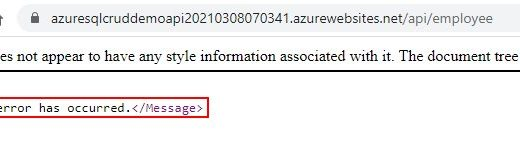 Error we are getting while accessing API