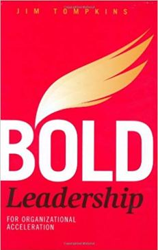 Bold Leadership for Organizational Acceleration Book