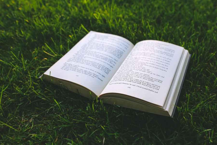 nature grass green book