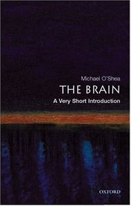 the-brain-very-short