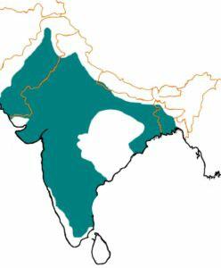 Tughlaq dynasty map