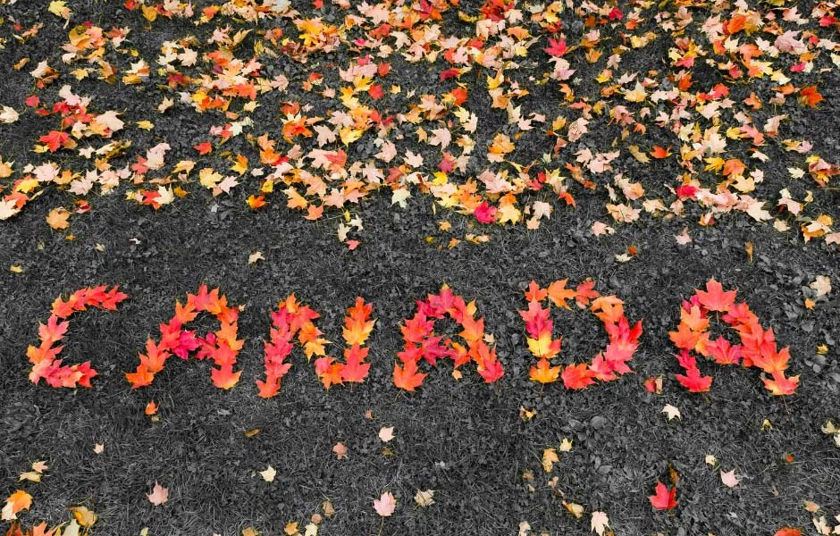 Canada spelled out in red Maple Leafs