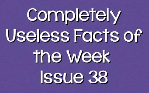 uselessfacts header38