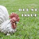 Odd Stew – Weird and Bizarre News – Issue 14