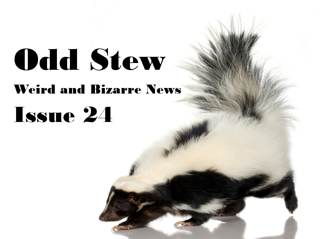 Odd Stew – Weird and Bizarre News – Issue 24