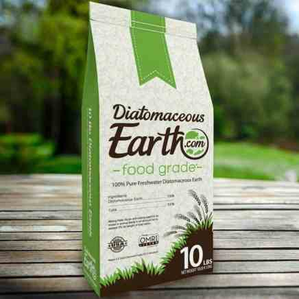 Diatomaceous Earth for spiders