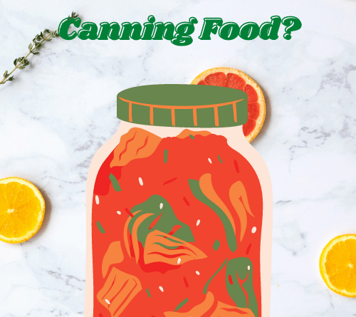 Is freeze drying better than canning food?