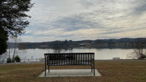Bench overseeing river