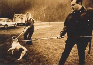 Male and female officers getting control of dog with leash poles
