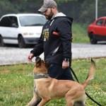 k9 and handler walking