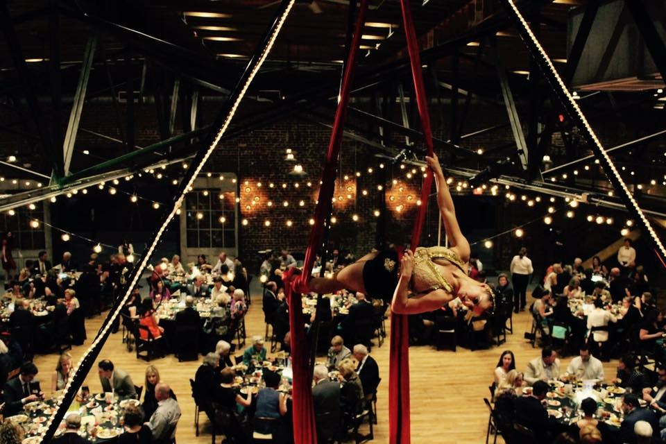 Knoxville Aerial Arts performance photo