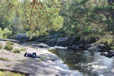 Tomus entspannt am River
