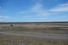 Ein einsamer Bus in seinem natürlichen Jagdrevier