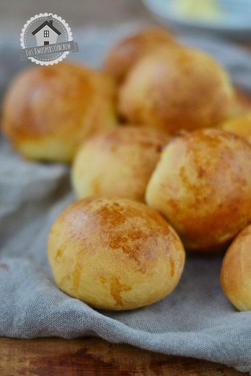 Brioche Burger Broetchen - Brioche Burger Buns 2