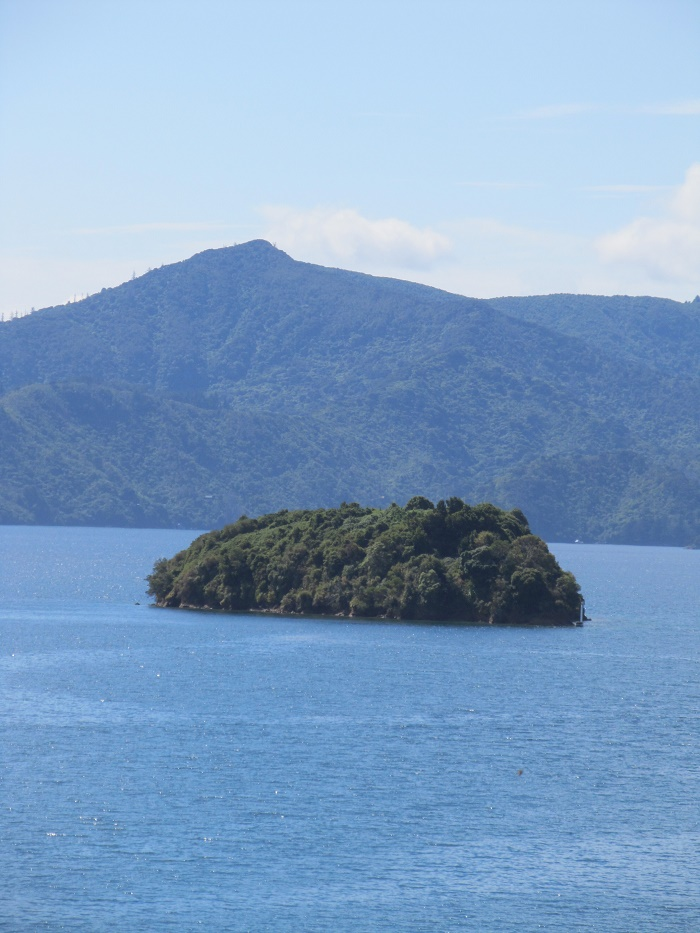 Marlborough Sounds 3