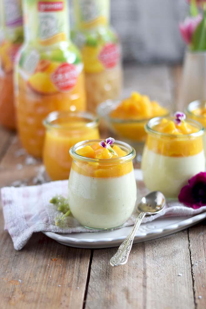 Joghurt Panna Cotta mit Lieblingssaft und Mango Salat - Yogurt Panna Cotta with Mango Salad (8)