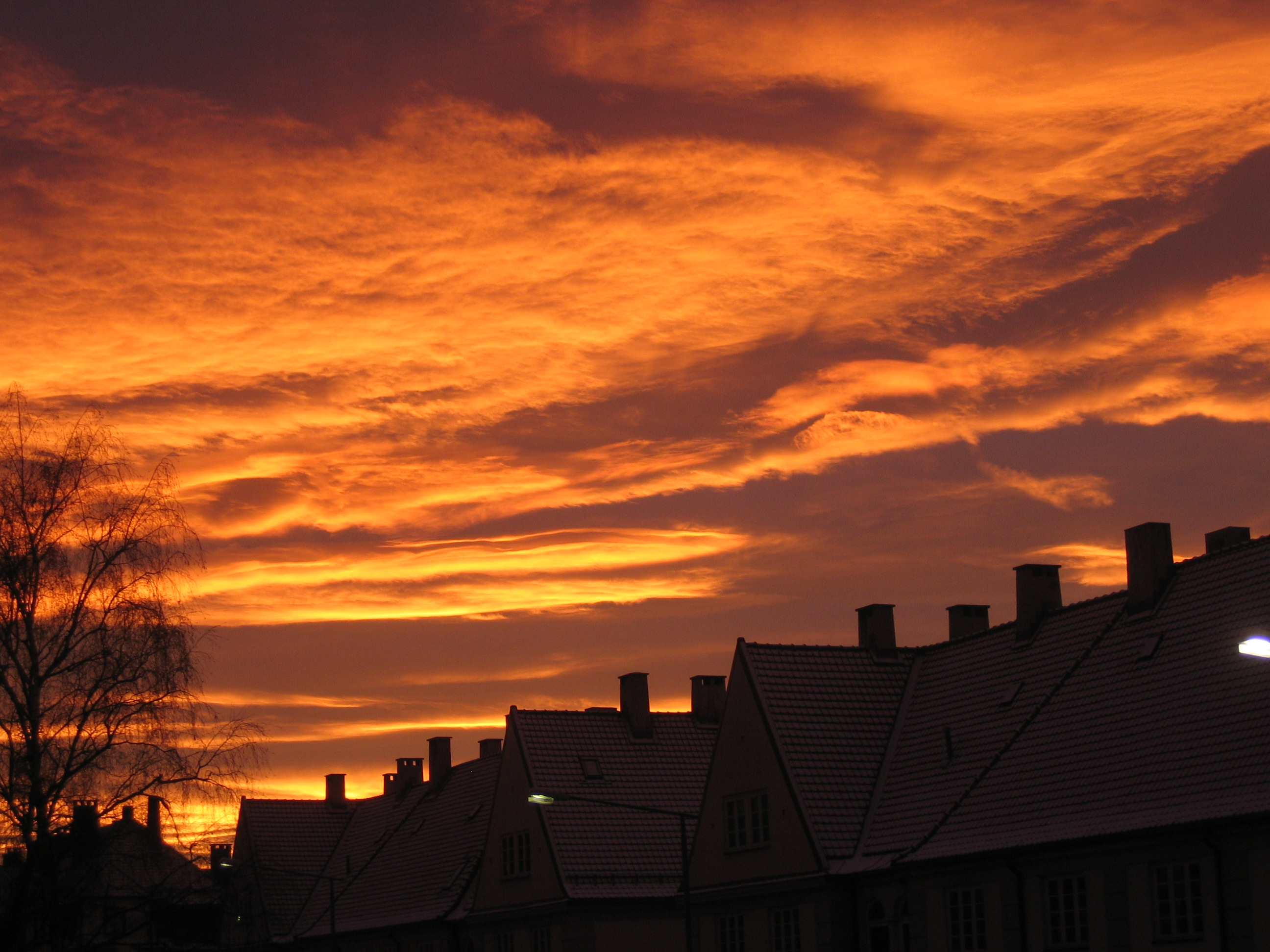 Oslo, January 2009