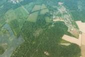 Fontainebleau Hot Air Balloon - 3