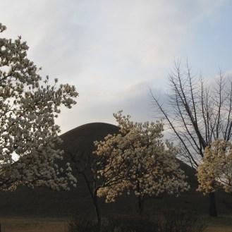 09 Geyongju Tomb of King-Michu and Cheonma Tomb 4