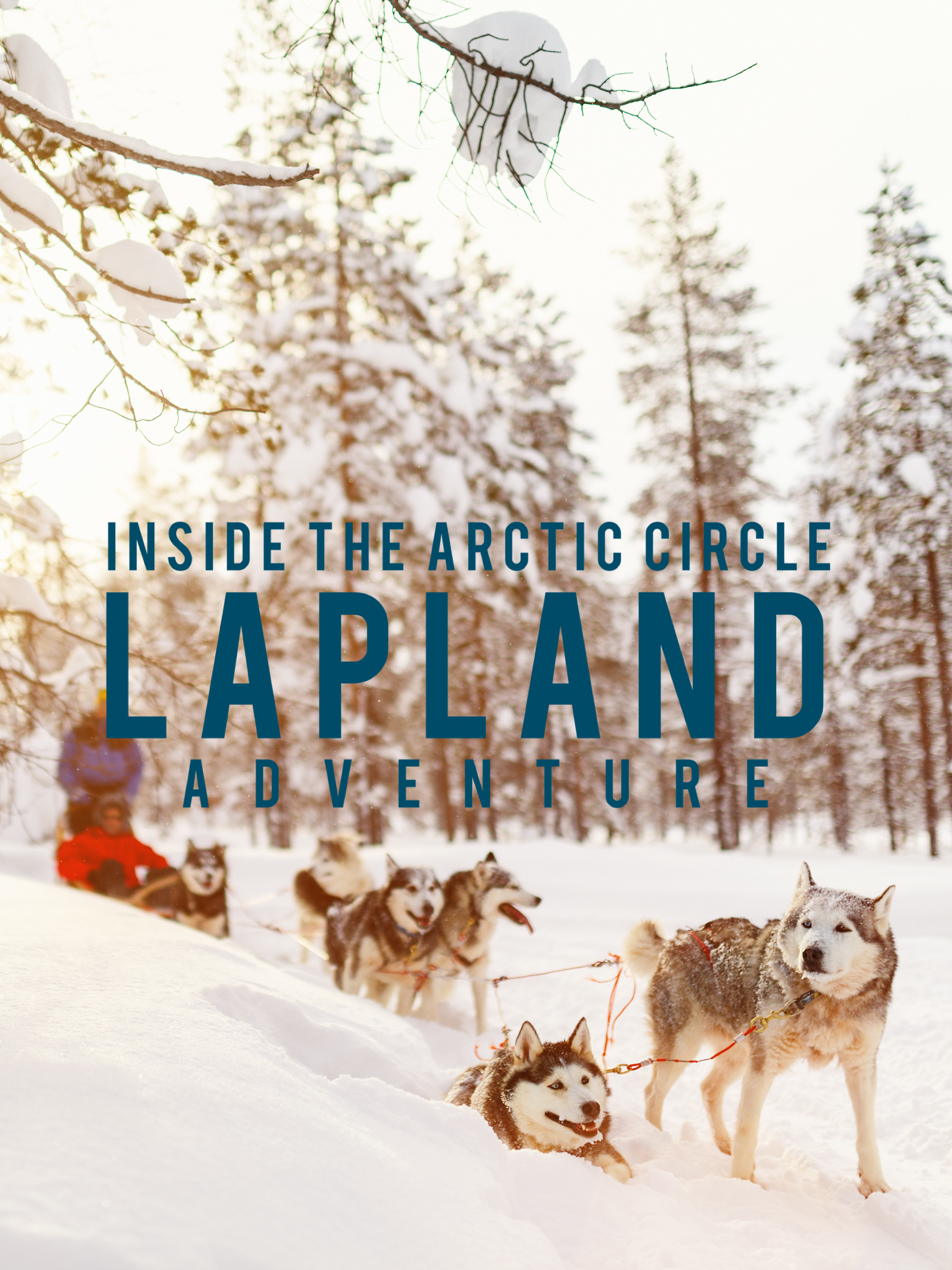 Inside the Arctic Circle: The Lapland Adventures