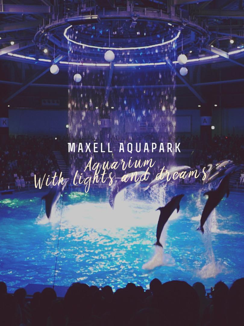 Aquarium with Lights and Dreams