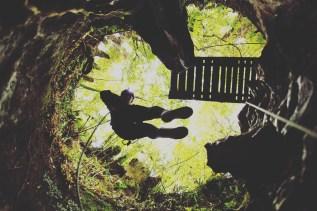 Waitomo Caves - Tours 4